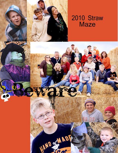 Straw maze blog